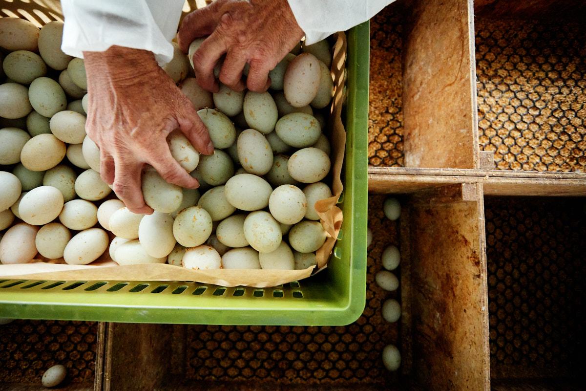 台東攝影工作室 台東商家攝影 浤良食品